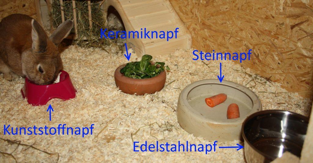 Futternäpfe für Kaninchen - Arten