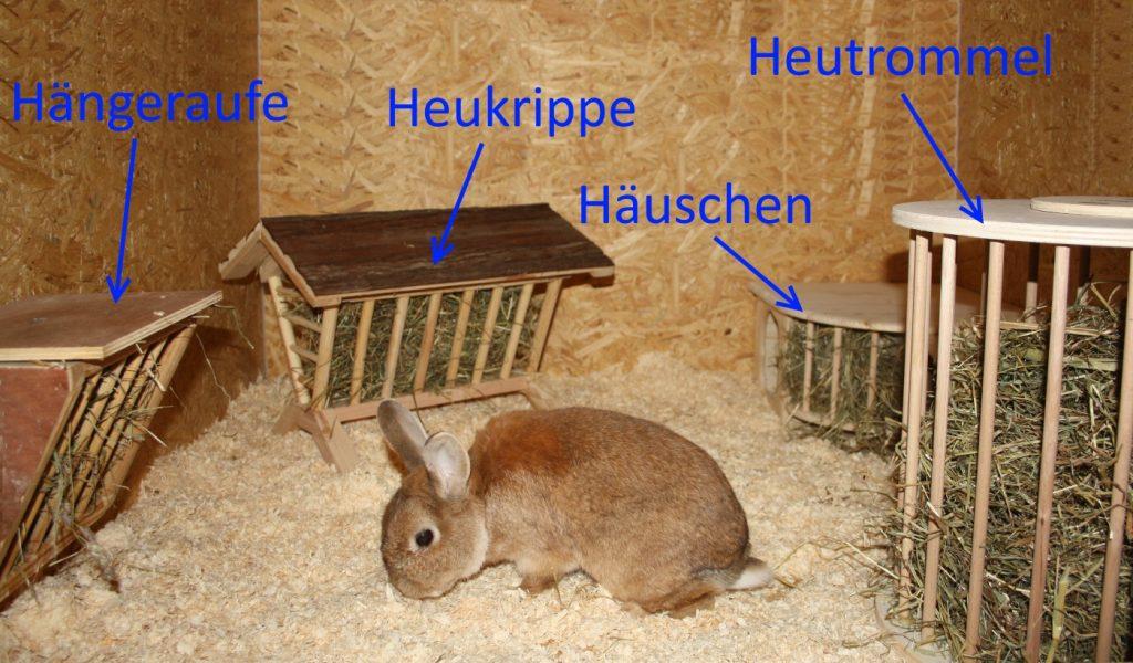 Heuraufen für Kaninchen - Arten